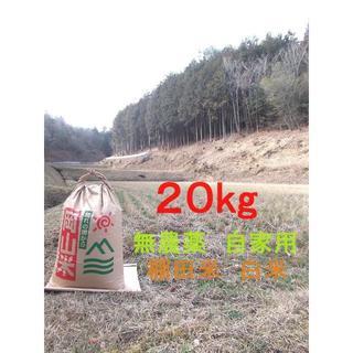 ■コシヒカリ 白米 20キロ 岡山県 棚田 新米 ポッンと一軒家 おまけ付き(米/穀物)