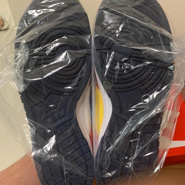 "NIKE(ナイキ)のスニ女様専用NIKE DUNK LOW ""what the""  メンズの靴/シューズ(スニーカー)の商品写真"
