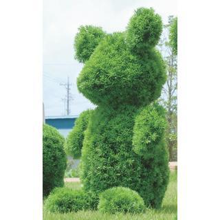 日本製 光の楽園【動物トピアリー/フェイクグリーン】高さ72cm ベアー(その他)