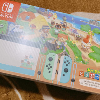Nintendo Switch - 任天堂Switch あつまれどうぶつの森セット