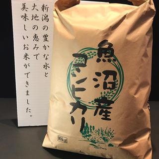 2019年産南魚沼市塩沢産コシヒカリ 10キロ(米/穀物)