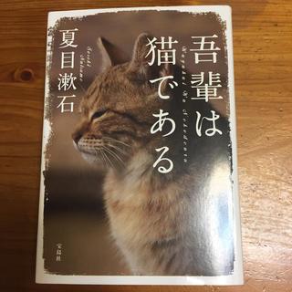吾輩は猫である(文学/小説)