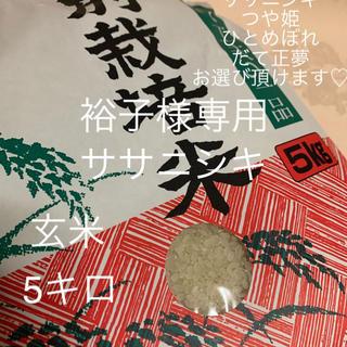 【裕子様】お取り置き ササニシキ 玄米5キロ(米/穀物)