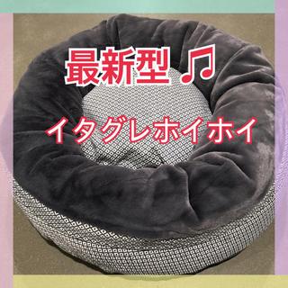 ☆新品・未使用☆コストコ イタグレホイホイ イタホイ 最新モデル 最安値