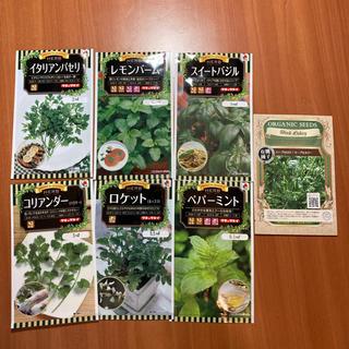 ハーブの種 人気の7種セット☆(野菜)