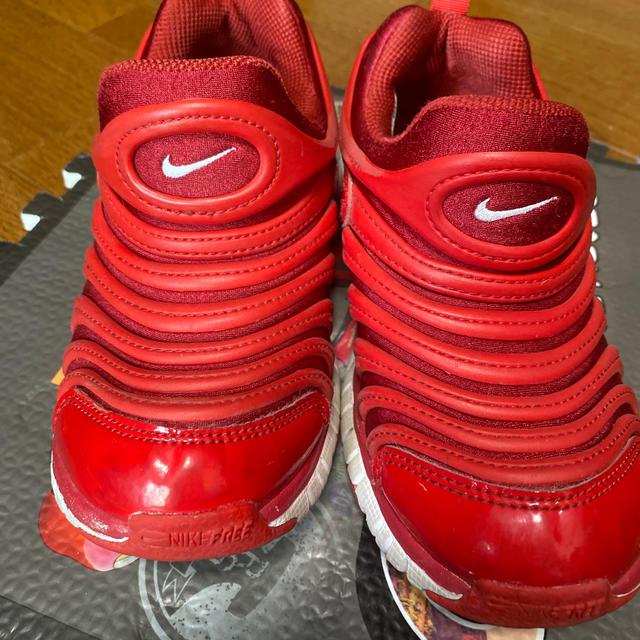 NIKE(ナイキ)のNIKE ダイナモ  18cm キッズ/ベビー/マタニティのキッズ靴/シューズ(15cm~)(スニーカー)の商品写真