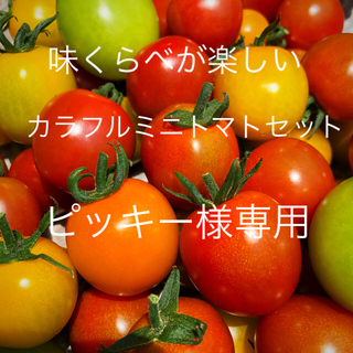 ピッキー様専用ミニトマトカラフルMIX 1.2キロ(野菜)