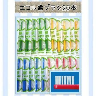 エコル歯ブラシ20本(歯ブラシ/デンタルフロス)
