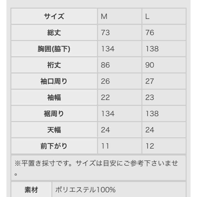 antiqua(アンティカ)の【新品・未使用】antiqua レディースのトップス(カットソー(長袖/七分))の商品写真