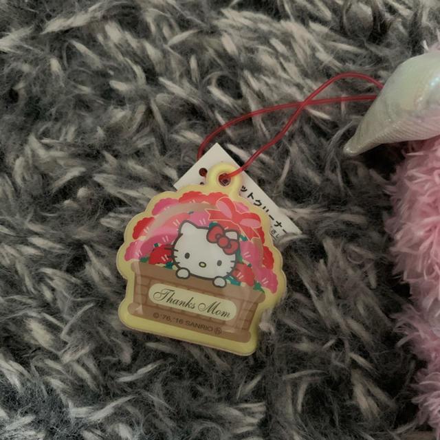 ハローキティ(ハローキティ)のタグ付き!即購入OK!サンリオ ハローキティちゃんストラップ&クリーナー セット エンタメ/ホビーのおもちゃ/ぬいぐるみ(キャラクターグッズ)の商品写真