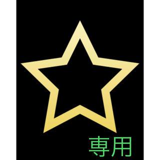 sa様専用(模型/プラモデル)