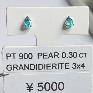 CE-50663 PT900 ピアス グランディディエライト AANI アニ