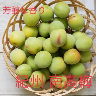 6月初旬まで(^^)梅の王様✴︎紀州 南高梅✴︎3kg