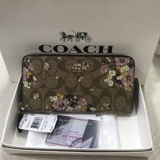 COACH - COACH新品コーチ 長財布 財布F31651