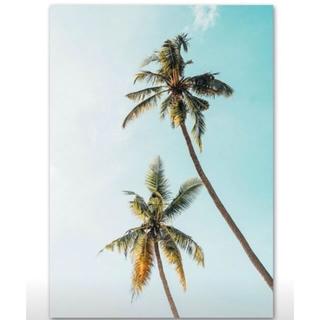 ロンハーマン(Ron Herman)の西海岸風インテリア 海を感じるインテリア 壁掛け(その他)