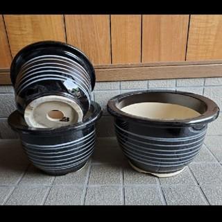 信楽焼 高級輪鉢 黒釉白筋入 10号 お買い得3枚セット(プランター)