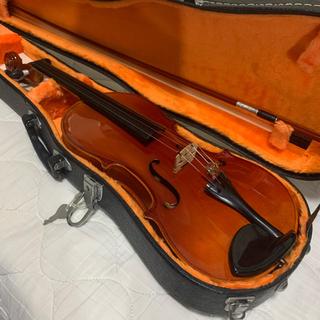 violin フルサイズ (ヴァイオリン)