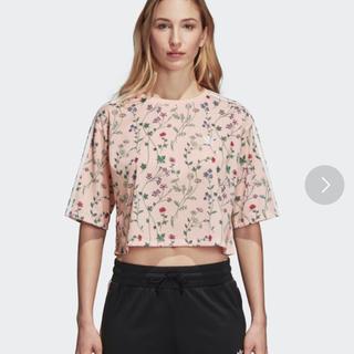 アディダス(adidas)のadidas オリジナルス クロップドTシャツ(Tシャツ(半袖/袖なし))