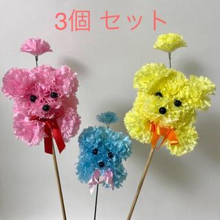 カーネーション プードル ピック  (イエロー&ピンク&ブルー) 3本セット(その他)