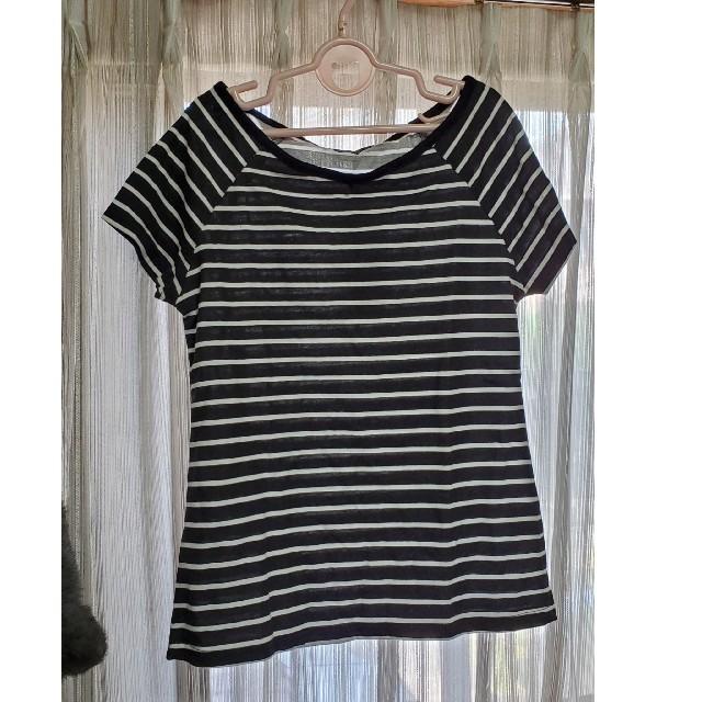 しまむら(シマムラ)の新品未使用✨Tシャツ しまむら Mサイズ レディースのトップス(Tシャツ(半袖/袖なし))の商品写真