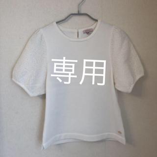 トッカ(TOCCA)のTOCCA 半袖綿セーター、セットアップ2点(ニット/セーター)
