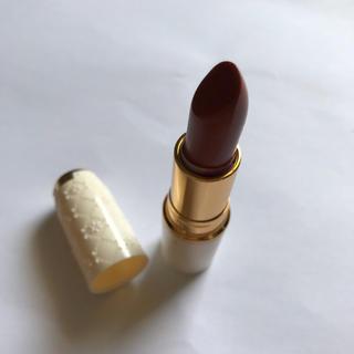 CEZANNE(セザンヌ化粧品) - セザンヌ ラスティングリップカラーN 504