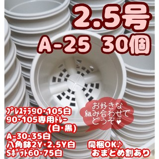 プラ鉢【A-25】30個 スリット鉢 プレステラ 多肉植物(プランター)