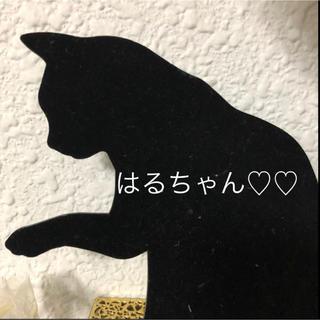 はるちゃん♡♡(ピアス)