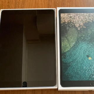 Apple - Apple Ipad pro 10.5 256GB WiFi