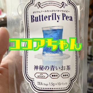 ココアちゃん🥰💕(茶)
