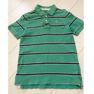 バックナンバー(BACK NUMBER)のBACK NUMBER バックナンバー ポロシャツ L(ポロシャツ)