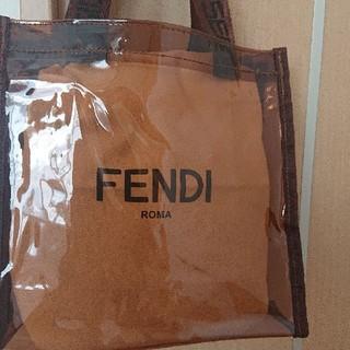 FENDI - FENDI保存袋と、セルジオロッジクリアバッグセット
