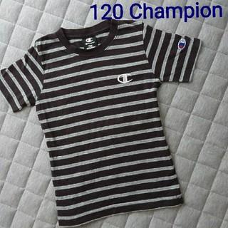 Champion - 120*ボーダーT