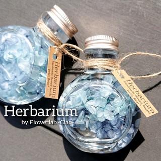 清涼感溢れる 夏のハーバリウム( ˊᵕˋ )(その他)