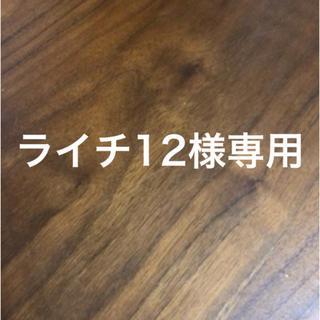 ライチ12様専用(その他)