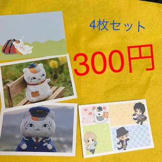 ニャンコ大先生 ポストカード4枚セット300円(写真/ポストカード)