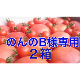 のんのB様専用 2箱(野菜)