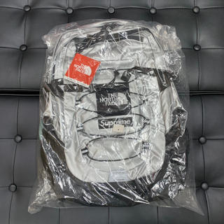 Supreme - Supreme North Face Metallic Backpack