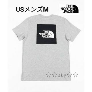 ザノースフェイス(THE NORTH FACE)の新品☆レア ノースフェイス Tシャツ USメンズM/日本L相当(Tシャツ/カットソー(半袖/袖なし))
