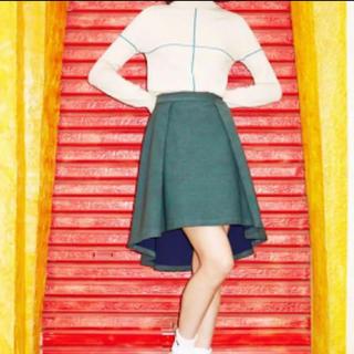 パメオポーズ(PAMEO POSE)の【完売品】PAMEOPOSE リバーシブルスカート(ひざ丈スカート)