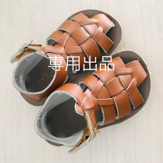 コドモビームス(こども ビームス)の【専用】Salt Water Sandals ソルトウォーターサンダル 5 (サンダル)