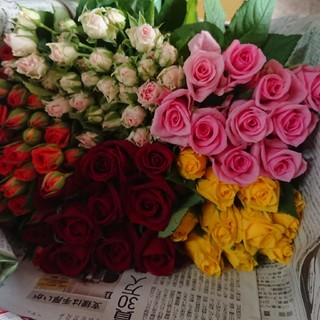 バラ 50本ミックス♪①生花・切り花(その他)