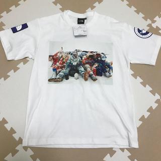 ザノースフェイス(THE NORTH FACE)のノースフェイス Tシャツ トランスアンタークティカ Mサイズ(Tシャツ/カットソー(半袖/袖なし))