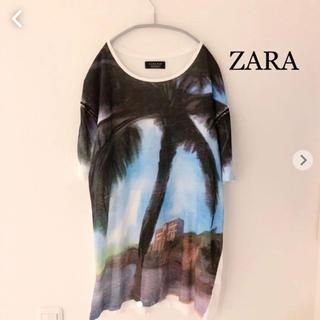 ザラ(ZARA)のZARA Tシャツ 半袖カットソー  グラフィック ザラ(Tシャツ/カットソー(半袖/袖なし))