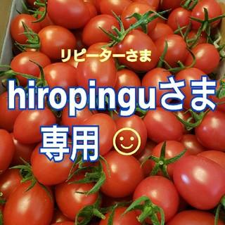 4㎏ hiropinguさま専用です☺️ ミニトマト(野菜)