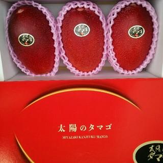 本日特価☆宮崎完熟マンゴー太陽のタマゴ(フルーツ)