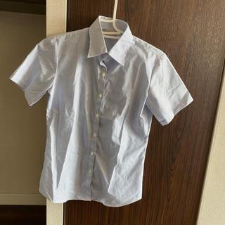 シマムラ(しまむら)のFREUDE ストライプシャツ しまむら(シャツ/ブラウス(半袖/袖なし))