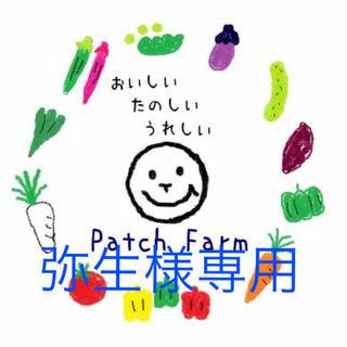 【弥生さま専用】旬彩野菜バスケット(野菜)
