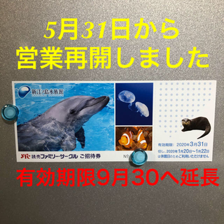 新江ノ島水族館、ご招待券・1枚(水族館)