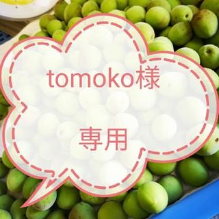 tomoko様専用 白加賀梅の青梅Lサイズ~3Lサイズ 5kg(フルーツ)